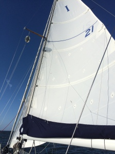 New Mainsail on a beautiful day of sailing to Rock Hall, MD