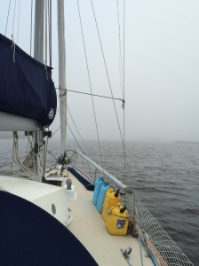 Fog bank looking from our bow