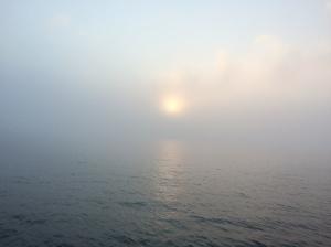 Fog going through Watch Hill cut