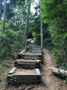 The Greenway Nature Preserve, the stairs that lead you to the highest point on Block Island