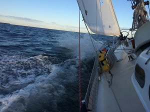 Scout doing what she does best! Sail in big wind and seas