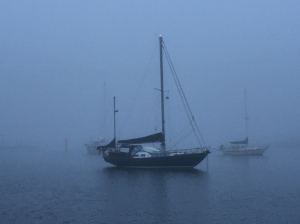 Scout in the morning fog at Miles Hammock anchorage