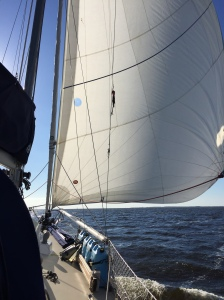 Sailing across the Albemarle Sound with a northeast wind