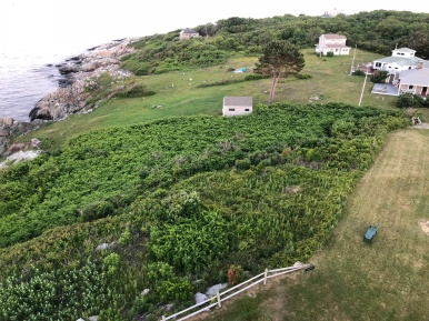 Another Possible trail seen from the tower