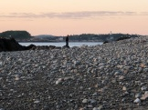 Sea glass hunting at sunset