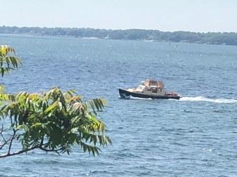Island Traffic