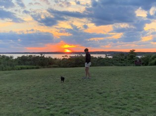 Tara and Pickles playing at sunset