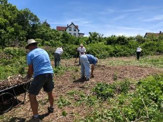 Volunteers working as a team
